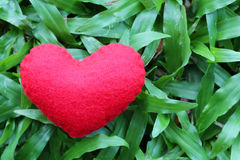 Red heart on the green lawn. Stock Photography