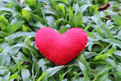 Red heart on the green lawn. Royalty Free Stock Photo