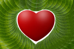 Red  heart with green leaves. Royalty Free Stock Images
