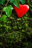 Red heart green moss ivy. Chocolate heart in bright red foil wrapper on dark green moss and ivy leaves, symbol of fidelity. Romantic background texture, copy stock photos