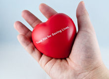 Red Heart On Hand Royalty Free Stock Photo
