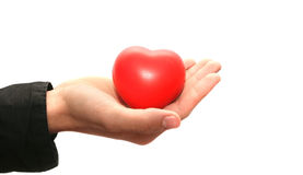 Red heart on the hand. Red heart on man hand isolated on white background Stock Photography