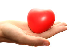 Red heart on the hand Stock Image