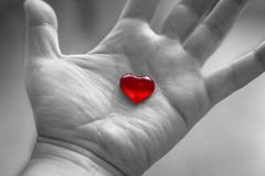 Red heart in hand on black and white background