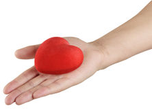 Red heart in hand Stock Photography