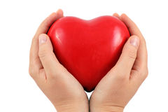 A Red heart in a hands Royalty Free Stock Photo