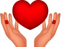 Red heart and hands Stock Photography