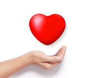 Heart in a hands  Stock Photography