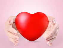 Heart in a hands  Royalty Free Stock Photography