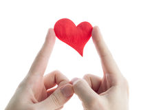 Red heart in hands. Stock Image