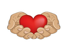 Red heart in the hands. Palms open. Hand gives or receives. Stock Photography