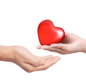 Red heart in hands Royalty Free Stock Images