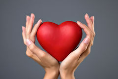 Red heart in hands Stock Photography