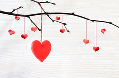 Red Heart Hanging On A Tree Branch Royalty Free Stock Photo
