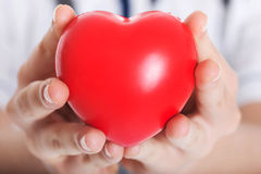 Red heart held by a female doctor. Stock Image