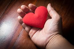 Red heart in human palm. royalty free stock photography