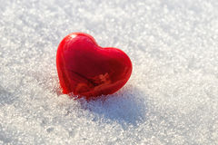 Red heart on ice wet snow, selective focus Royalty Free Stock Images