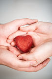 Red Heart In Hands Royalty Free Stock Photos