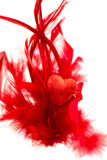 Red Heart is laying on Pile of Red Feathers Royalty Free Stock Photography