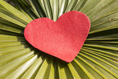 Red heart with leaf Royalty Free Stock Photo