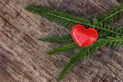 Red heart lies on a wooden background with green leaves, concept stock images