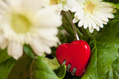 Red heart lock Royalty Free Stock Photography