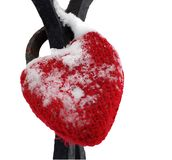 Red heart love lock snow isolated Stock Photo