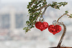 Red heart love and tree Royalty Free Stock Photos
