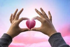 Red Heart and love on valentines day concept: Human handing big. Red heart over blurred nature background Stock Photography