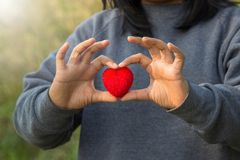 Red Heart and love on valentines day concept: Human handing big. Red heart over blurred nature background Royalty Free Stock Image