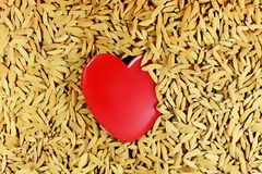 Lovely Red Heart on paddy floor. A Red Heart for Lover Concept royalty free stock image
