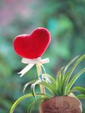 Red heart made of a towel, stick with the pencil, tie ribbon and dwarf pineapple in the vase shaped boot. royalty free stock image