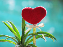 Red heart made of a  towel, stick with the pencil, tie ribbon and dwarf pineapple in the vase shaped boot. Royalty Free Stock Photos