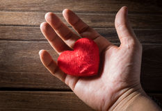Red heart in man hand. Stock Images