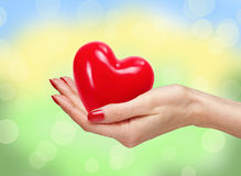 Red heart in man hand over bright nature Stock Photography