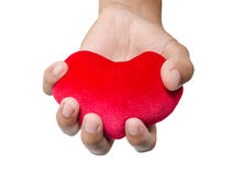Red heart in man hands. Stock Photography
