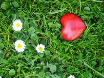 Red heart meadow Royalty Free Stock Photography
