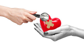 Red heart with medical path in woman hand and stethoscope. Isolated on white stock photos