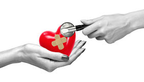 Red heart with medical path in woman hand and stethoscope. Isolated on white royalty free stock photography