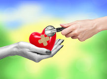 Red heart with medical path in woman hand and stethoscope. Over nature background stock images