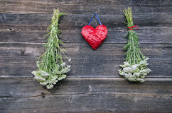 Red heart and medical plant Achillea millefolium yarrow common herb bunch on wall Royalty Free Stock Photography