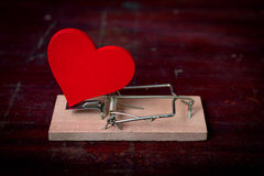 Red heart and mouse trap Stock Image