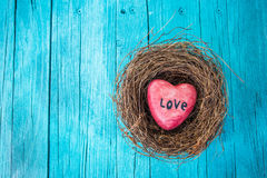 Red heart in nest and turquoise wooden background in country style. Stock Images