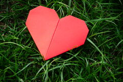 Red heart paper on green grass. In garden stock photography