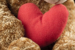 Red heart in the paws of a Teddy bear. Royalty Free Stock Photography