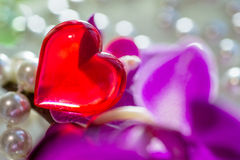 Red heart among the pearls and orchids. Red heart among the pearls and purple orchids Stock Photography