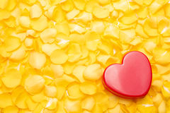 Red heart. On a pile of yellow rose petals Stock Image