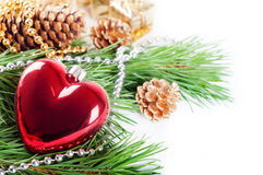 Red heart and pine branch Royalty Free Stock Photos