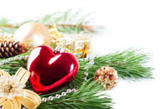 Red heart and pine branch Royalty Free Stock Images