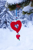 Red heart pine christmas ornament winter forest. Single red heart shaped Christmas or Valentines decoration hanging from snow covered branches of pine tree in Royalty Free Stock Images